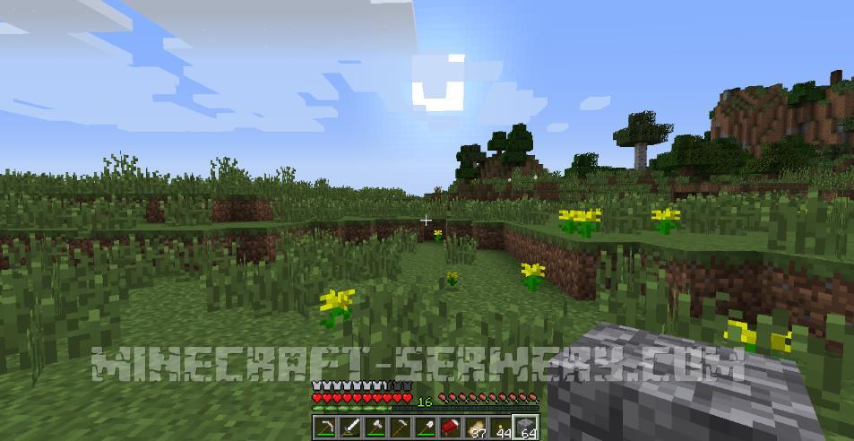 minecraft noc na otwartym polu