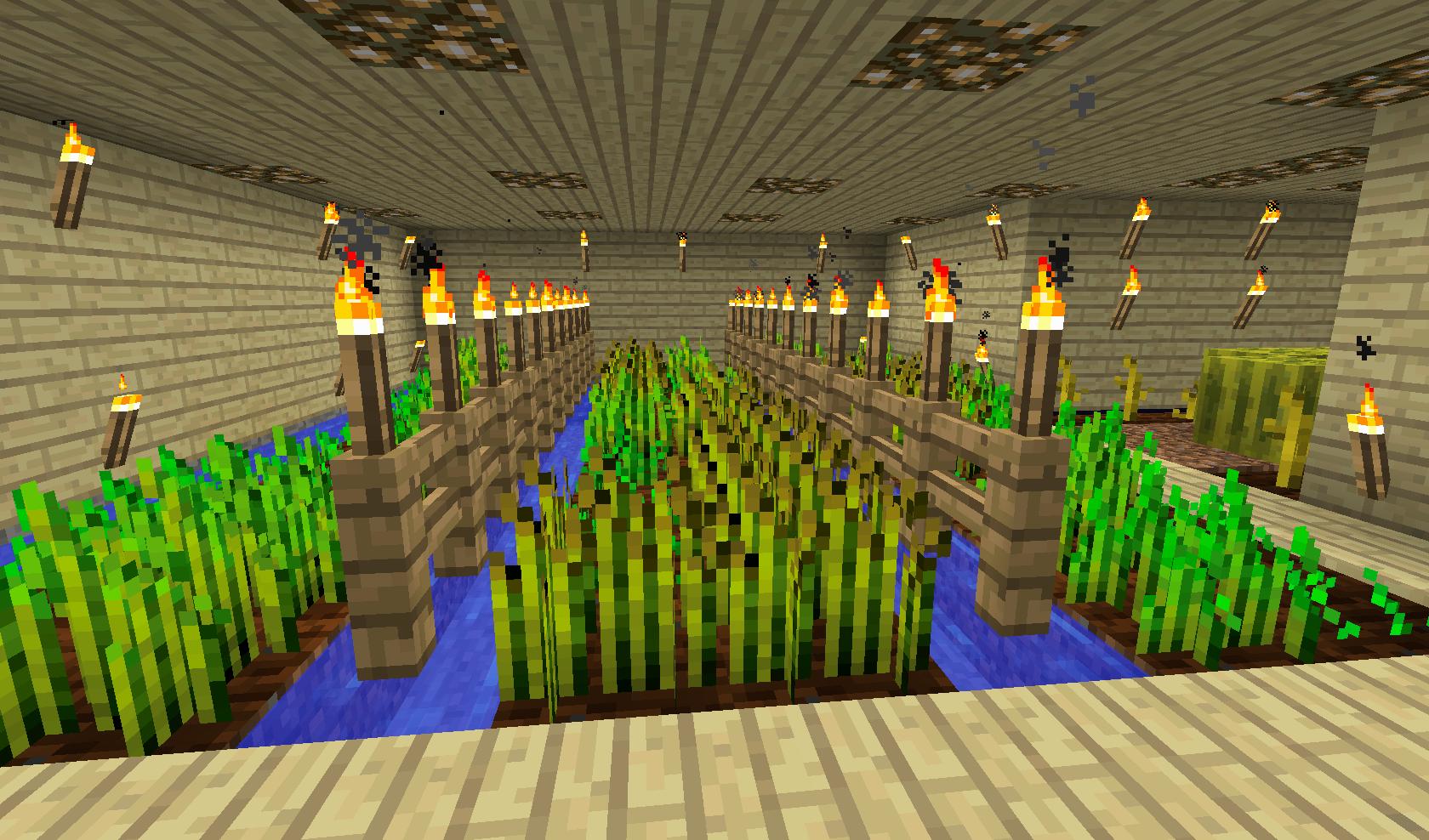 Minecraft - farma