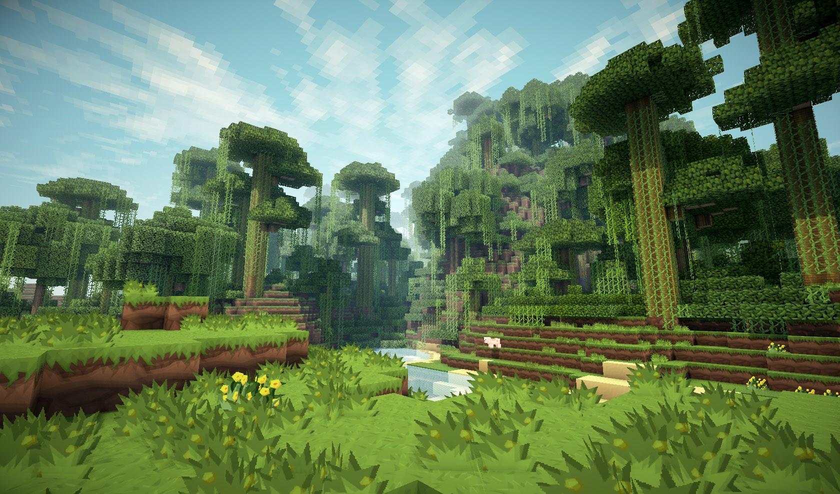 Dżungla O_o